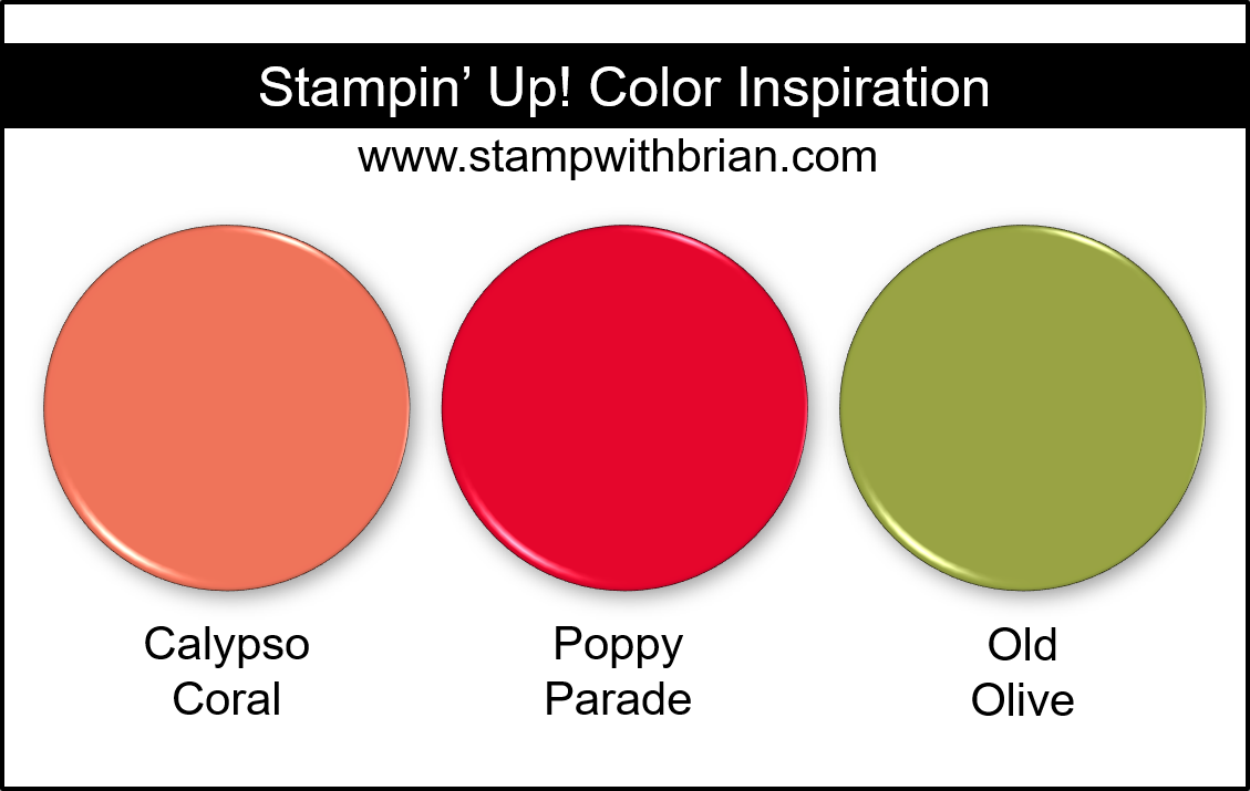 Stampin Up! Color Inspiration - Calypso Coral, Poppy Parade, Old Olive