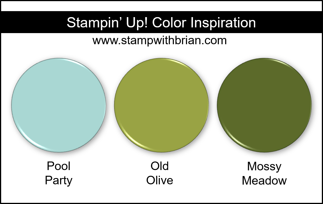 Stampin Up! Color Inspiration - Pool Party, Old Olive, Mossy Meadow