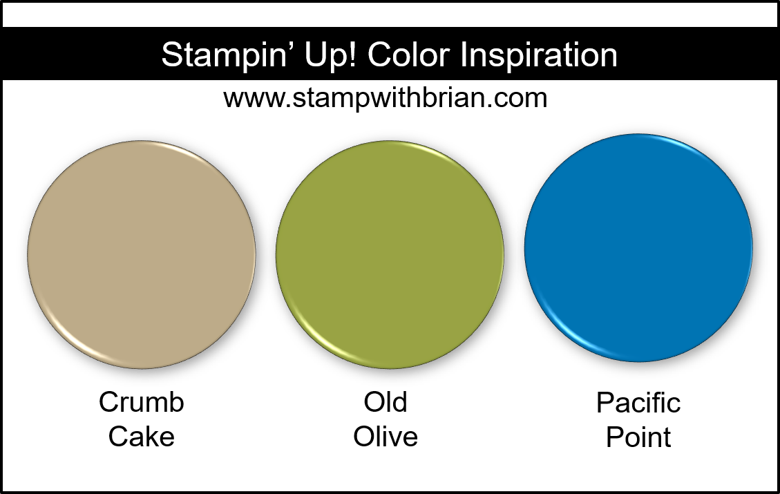 Stampin Up! Color Inspiration - Crumb Cake, Old Olive, Pacific Point