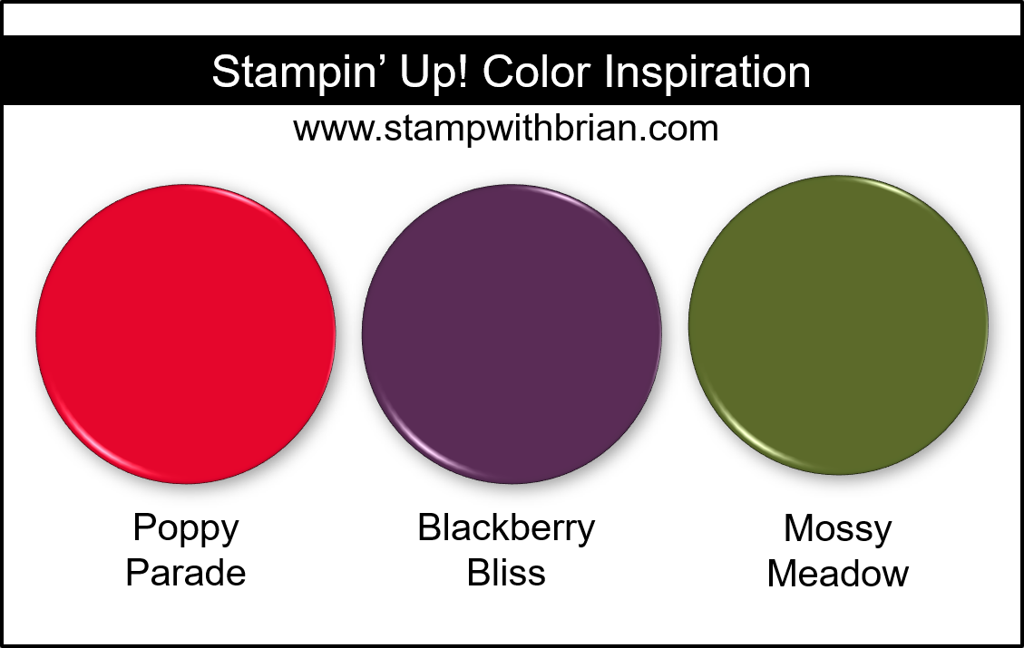 Stampin Up! Color Inspiration - Poppy Parade, Blackberry Bliss, Mossy Meadow