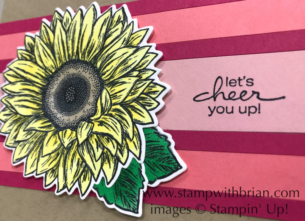 Celebrate Sunflowers, Lovely You, Stampin Up!, Brian King