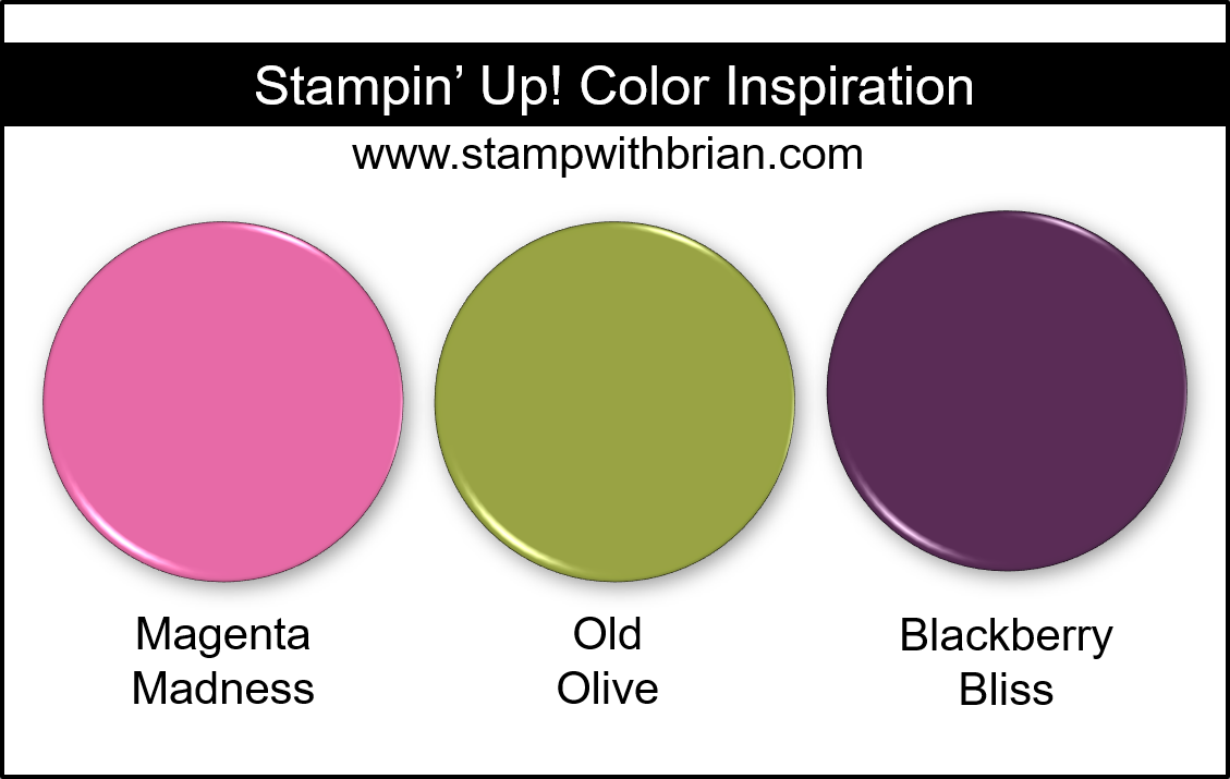 Stampin Up! Color Inspiration - Magenta Madness, Old Olive, Blackberry Bliss