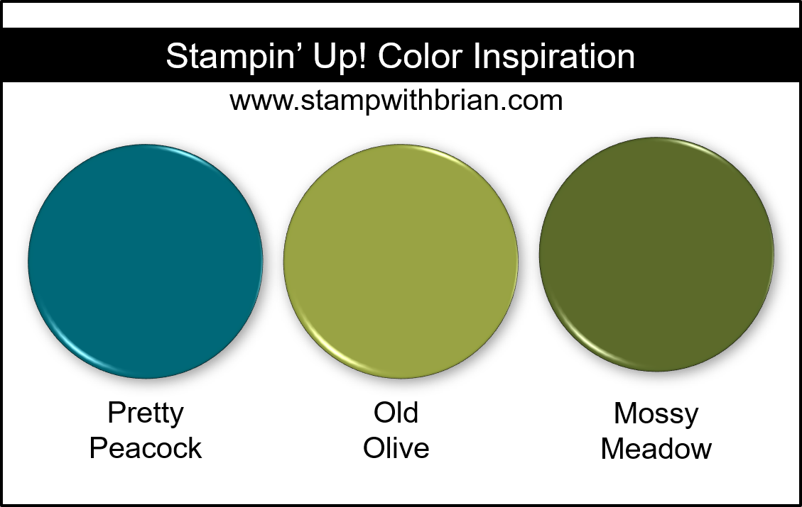 Stampin Up! Color Inspiration - Pretty Peacock, Old Olive, Mossy Meadow